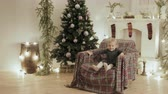 небольшой : Beautiful baby fun jumping and laughing in the chair for the new year. The room is decorated with lights and balls, there is a Christmas tree Стоковые видеозаписи