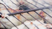 colesterol : Close - up of many appetizing brown-crusted chicken shins roasting with onions on a rusty grill amid gray smoke. The concept of junk food