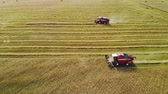 vyrobit : Aerial view of two harvesters red removing rows of plants crops in Sunny summer weather on the background of picturesque landscapes of agricultural land Dostupné videozáznamy
