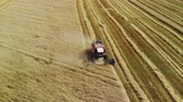 vyrobit : Aerial view of the arc of the red harvester, working in a wheat field. Harvesting of grain crops in dry hot summer weather