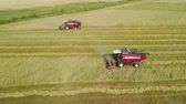 vyrobit : Aerial view of the flight in an arc of two red harvesters working in a wheat field. Harvesting of grain crops in dry hot summer weather Dostupné videozáznamy
