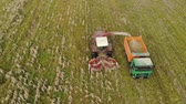 vyrobit : Aerial view of a self-propelled harvester with a rotary Reaper, harvesting ripe dry corn in the body of a truck