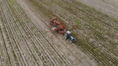 vyrobit : Aerial view of the operator-sorter potato harvester, discarding impurities from the conveyor in front of the hopper of the agricultural machine during harvesting of root crops. Concept of agribusiness