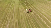 измельченный : Aerial view of a farmer on a self-propelled picker collecting mowed crushed hay in the body of a tractor trailer. The concept of agribusiness. Forage for livestock
