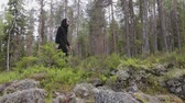 erőszakos : Side view of a man in black clothes walking alone in a deep rocky forest. Travel, healthy active lifestyle, adventure, outdoor recreation. The concept of wilderness study Stock mozgókép