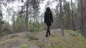 erőszakos : Rear view of a man in black clothes walking alone in a deep rocky forest. Travel, healthy active lifestyle, adventure, outdoor recreation. The concept of wilderness study Stock mozgókép