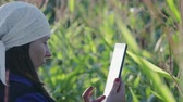 vyrobit : A woman agronomist in overalls with a tablet computer on an agricultural cultivated corn field. The concept of modern technologies in agribusiness. Warm evening weather in the summer Dostupné videozáznamy