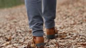 меланхолия : Woman in jeans walking on the carpet of dry leaves. Стоковые видеозаписи