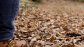Woman in jeans walking on the carpet of dry leaves. Archivo de Video