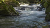 bystřina : 4k timelapse of the Monte Gelato waterfalls located on the Treja river in Lazio. Italy. Dostupné videozáznamy