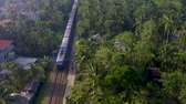 ceylon : aerial shot the old train rides through the tropics with palm trees and villas Stock Footage
