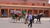 marroquino : Horse and carriage, transporting tourists Stock Footage