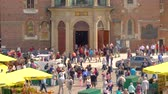 krakow : Horse and carriage, transporting tourists Stock Footage