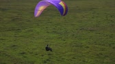 Paraglider landing on the grass