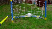 lawn : Childrens toy goal set Stock Footage