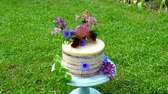 morangos : Festive cake with flowers