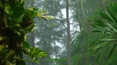 vento : Tropical downpour, slow motion
