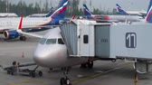 zástěra : Airplanes of Aeroflot on the apron of Sheremetyevo Airport