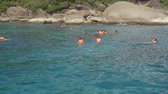 mascarada : Snorkeling near Similans