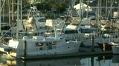 cascos : Pan across boats at a marina at sunset. Stock Footage
