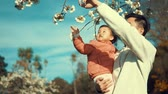 nevetés : Father child next to sakura tree in park in slow motion