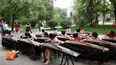 festa della musica : Girls play Guzheng in the park for the show.