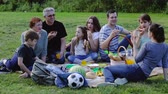 Smiling people of different ages sitting and talking on picnic Stock Footage