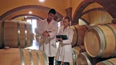 каберне : Winery workers in white robes controlling fermantation process of wine Стоковые видеозаписи