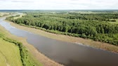 Aerial view of picturesque forest in central Russia on summer day Stock Footage