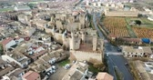 Aerial view of the castle of the Palacio Real de Olite. Navarre. Spain Stock Footage