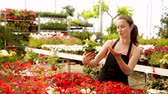 горшках : Positive female florist in apron working with begonia plants in hothouse indoors