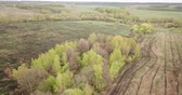 mei : Panoramic scenic view of fields and green grasslands of Central Russia on cloudy may day Stockvideo