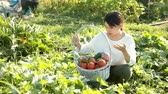 ズッキーニ : Cheerful Asian girl holding basket of tomatoes, cucumbers and peppers on her plantation
