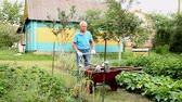 kruiwagen : Senior man carrying garden tools in a wheelbarrow Stockvideo