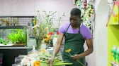 deneyimli : Friendly African-American man owner of floral shop selling fresh flowers, demonstrating colored gerberas Stok Video
