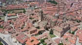 catholic church : Salamanca Cathedral and historical center of city, Spain Stock Footage