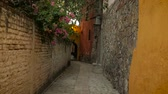 arnavut kaldırımı : Steadicam down a narrow colorful alley with brick walls and flowers in slow mo