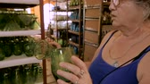 srovnávat : A woman in her early 60s comparing two green glasses while shopping in slow motion