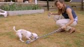 родословная : Attractive woman playing tug of war with a rope toy and her chihuahua male dog outside in slow motion