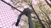 perseguição : Low angle of a man climbing over a chain link fence trespassing in private property in slow motion Stock Footage