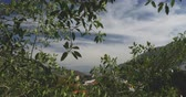 puerto vallarta : View through leaves looking out a lush mountain valley in the jungle or forest with buildings in the distance - crane up Stock Footage