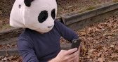 панда : Proud man wearing a panda head mask taking selfies with a smart phone and sharing them on social media on his mobile device in a park Стоковые видеозаписи
