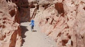 bebês : A family kiking through Little Wild Horse slot canyon in the desert of Southern Utah Stock Footage