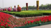politics : beautiful gardens at tiananmen square beijing china Stock Footage