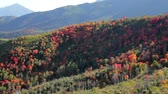 yellow : Colorful Fall Mountain Range Panning Shot
