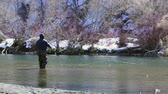 emaranhado : Fly Fishing in River Stock Footage