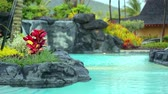 relaks : Luxury resort swimming pool Wideo