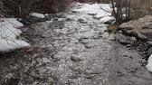 наводнение : Stream with snow melting