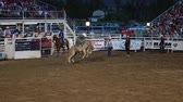 quarto : cowboy saddle bronc riding in slow motion at a prca professional rodeo