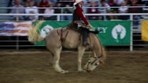 walka : Riding a saddle bronc at the rodeo